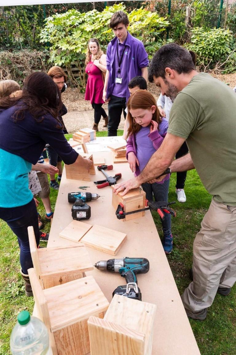 10 birdbox workshop (Medium)